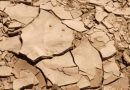 Planeta perde 24 bilhões de toneladas de solo fértil todos os anos<BR><BR>