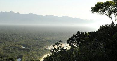Aplicativo permite denúncias de crimes ambientais na Amazônia<BR><BR>