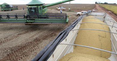 Conab estima colheita de 264,8 milhões de toneladas de grãos<BR><BR>